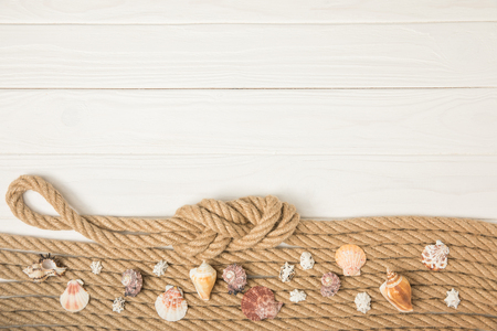 top view of pile of seashells on knotted brown nautical ropes on white wooden background