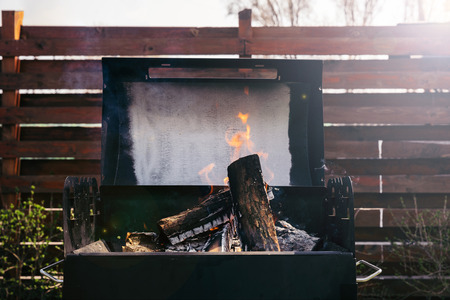 Logs burning in grill for barbecue outdoors Stock Photo