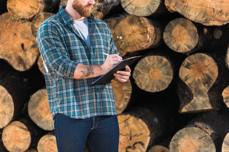 cropped image of lumberjack in checkered shirt writing in clipboard on logs background Stockfoto