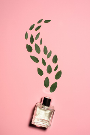 top view of glass bottle of perfume with composed green leaves on pink surface Foto de archivo - 106607357