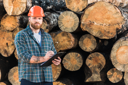 lumberjack with tattooed hand in protective helmet writing in clipboard on logs background Stockfoto