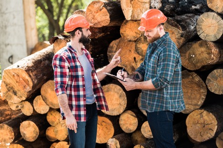 lumberjack in protective helmet pointing by finger on logs to partner while he writing in clipboard