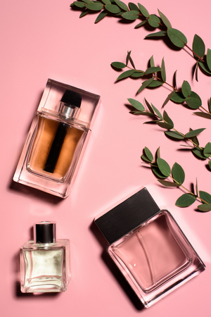 top view of bottles of perfumes with green branches on pink surface