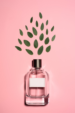 top view of bottle of aromatic perfume with composed green leaves on pink surface Banco de Imagens