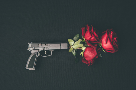 Red roses in gun barrel isolated on black Stock Photo