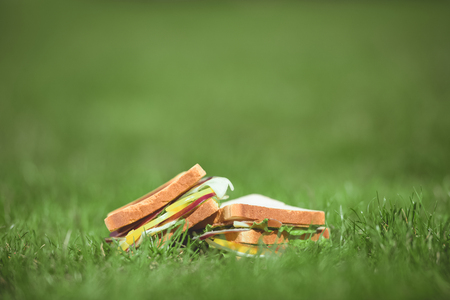 closeup shot of two sandwiches on green grass