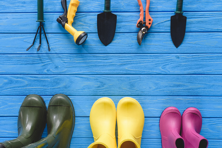 top view of arranged gardening tools and colorful rubber boots on blue wooden planks 版權商用圖片