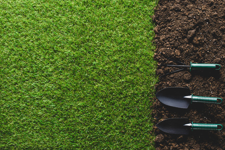 top view of grass and arranged gardening tools on soil Reklamní fotografie