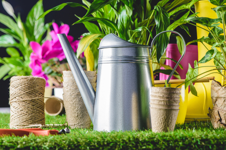 closeup view of secateurs, watering can and flower pots on lawn 스톡 콘텐츠