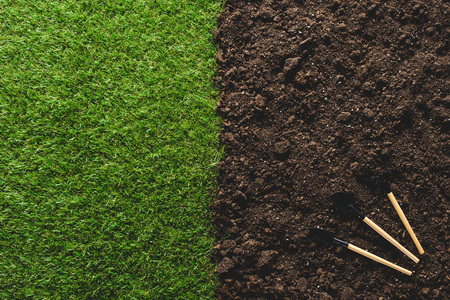 top view of lawn and gardening tools on soil Reklamní fotografie