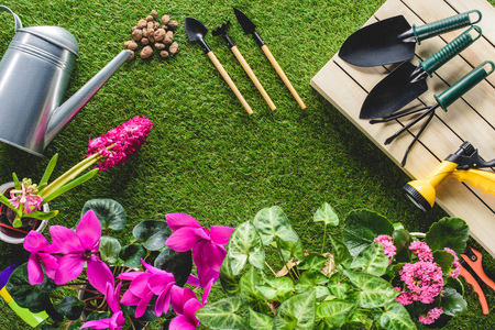top view of arranged gardening equipment and flowers on grass Фото со стока