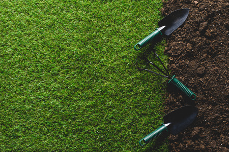 top view of grass and shovels with hand rake on soil