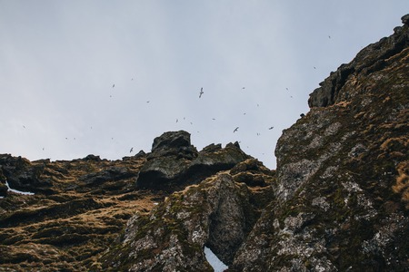 majestic view of scenic rocks with snow and birds flying in sky, iceland, raudfeldsgja gorge Stock Photo - 106836899