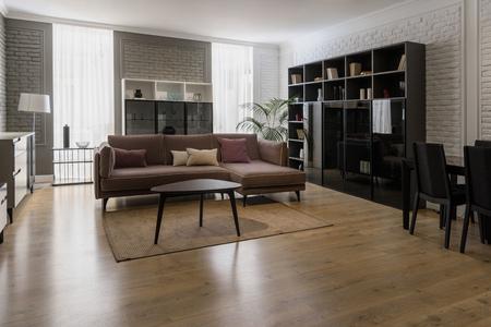 Soggiorno moderno ristrutturato con mobili in stile Archivio Fotografico