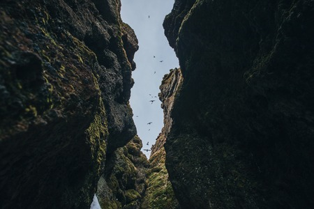 bottom view between majestic rocks at blue sky with flying birds, raudfeldsgja gorge, iceland