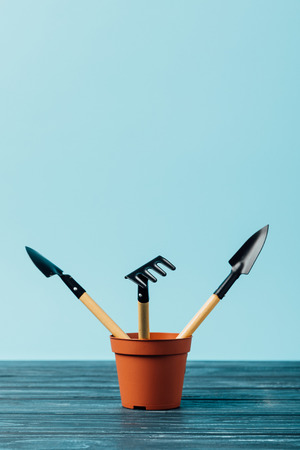 close up view of gardening tools in flowerpot on wooden tabletop on blue Standard-Bild