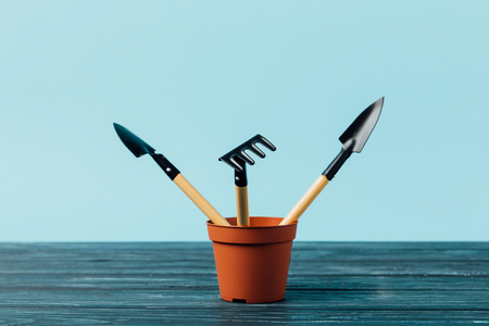 close up view of gardening tools in flowerpot on wooden tabletop on blue Banco de Imagens