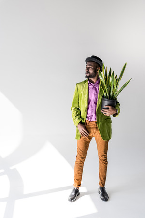 fashionable african american man in hat with green plant in flowerpot in hand posing on grey background