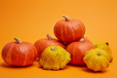 pile of fresh raw ripe pumpkins on orange background