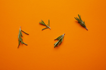 top view of fresh healthy rosemary on orange background Stock fotó - 106888143