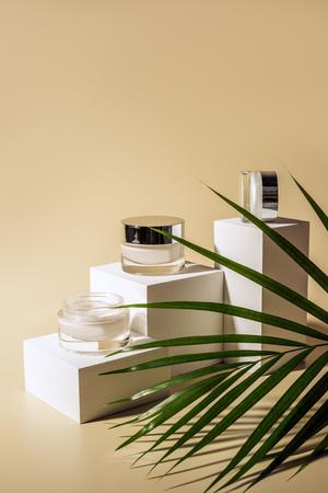 Vista de cerca de la hoja de palma verde, cremas faciales y corporales en frascos de vidrio en cubos blancos sobre fondo beige Foto de archivo