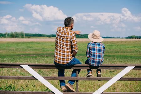 Vista posterior de padre e hijo sentados en la valla y mirando el campo verde Foto de archivo