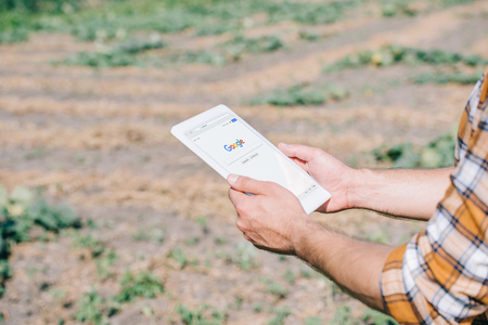 cropped shot of farmer using digital tablet with google website while standing on field Stock fotó