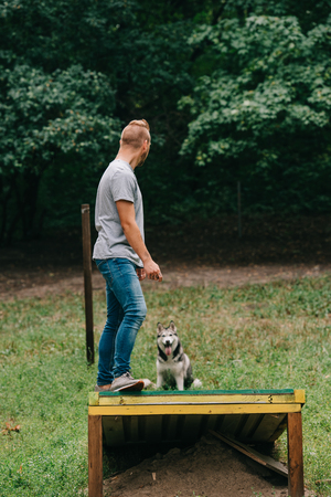 cynologist with siberian husky on dog walk obstacle in obedience class Banco de Imagens