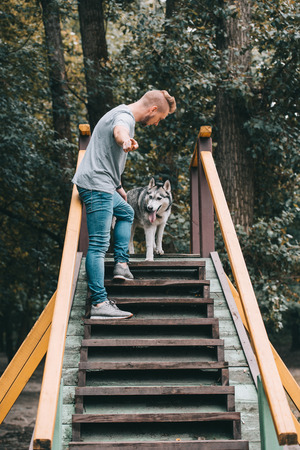 dog trainer with obedient husky dog on stairs obstacle