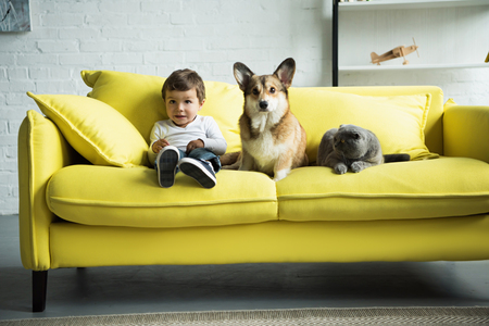 adorable kid with dog and cat sitting on yellow sofa at home