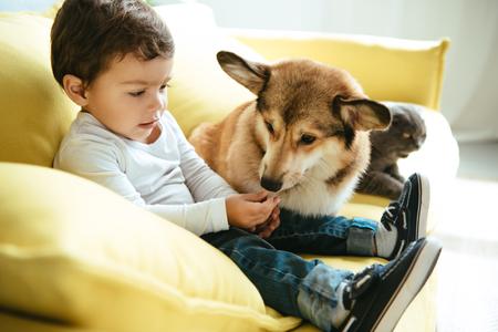 Adorable niño sentado en el sofá con perros y gatos Foto de archivo