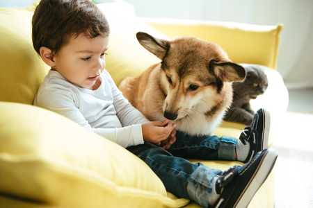 schattige jongen zittend op de bank met kat en hond Stockfoto