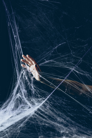 partial view of woman with hand in spider web in darkness on halloween