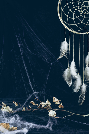 dreamcatcher with feathers in darkness with spider web and dry branch
