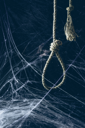hangman noose hanging in darkness with spider web, creepy halloween decor Фото со стока
