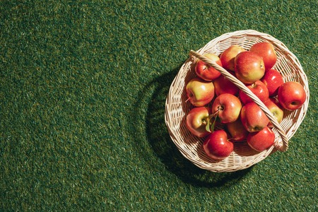 red apples in wicker basket on grass background