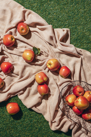 top view of red apples in metal basket sacking cloth and green grass Фото со стока