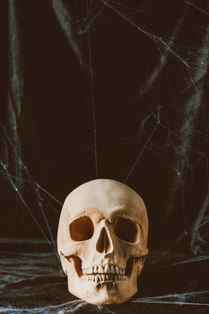gloomy halloween skull on black cloth with spider web