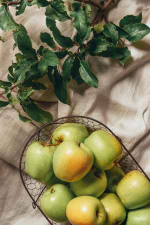 green apples in metal basket with apple tree leaves on sacking cloth