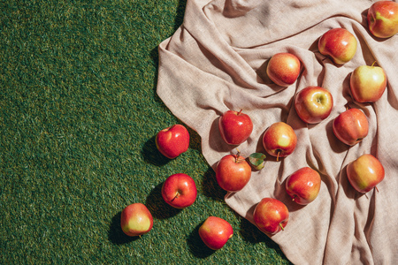Top view of red apples on sacking cloth and green grass Фото со стока