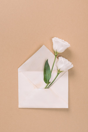Top view of white eustoma flowers in envelope on beige background 版權商用圖片
