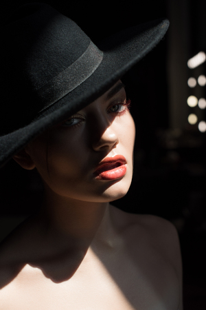 beautiful girl with makeup posing in black felt hat