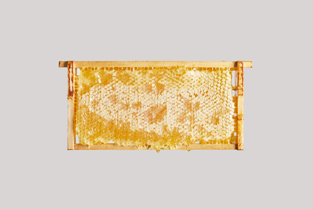 close up view of sweet beeswax on grey background