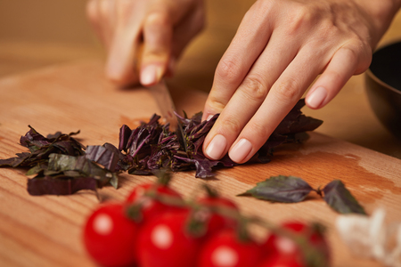 cropped shot of woman cutting basil leaves