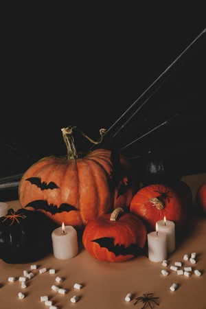 pumpkins, paper bats, spider and spiderweb on table, halloween concept