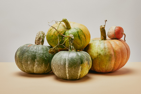 autumnal harvest of different green pumpkins on table Stok Fotoğraf - 108723287