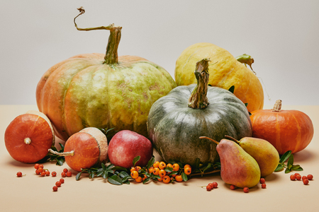 autumnal decoration with pumpkins, apple, pears and firethorn berries on table