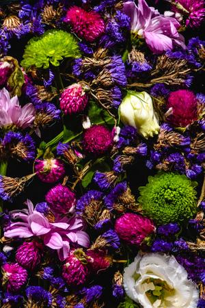 top view of various beautiful blooming flowers on black 写真素材