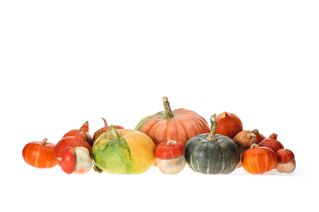 pile of different autumnal ripe pumpkins isolated on white