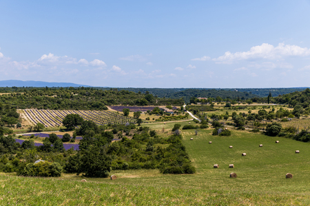 beautiful green plants, hay bales on field and farm buildings in provence, france